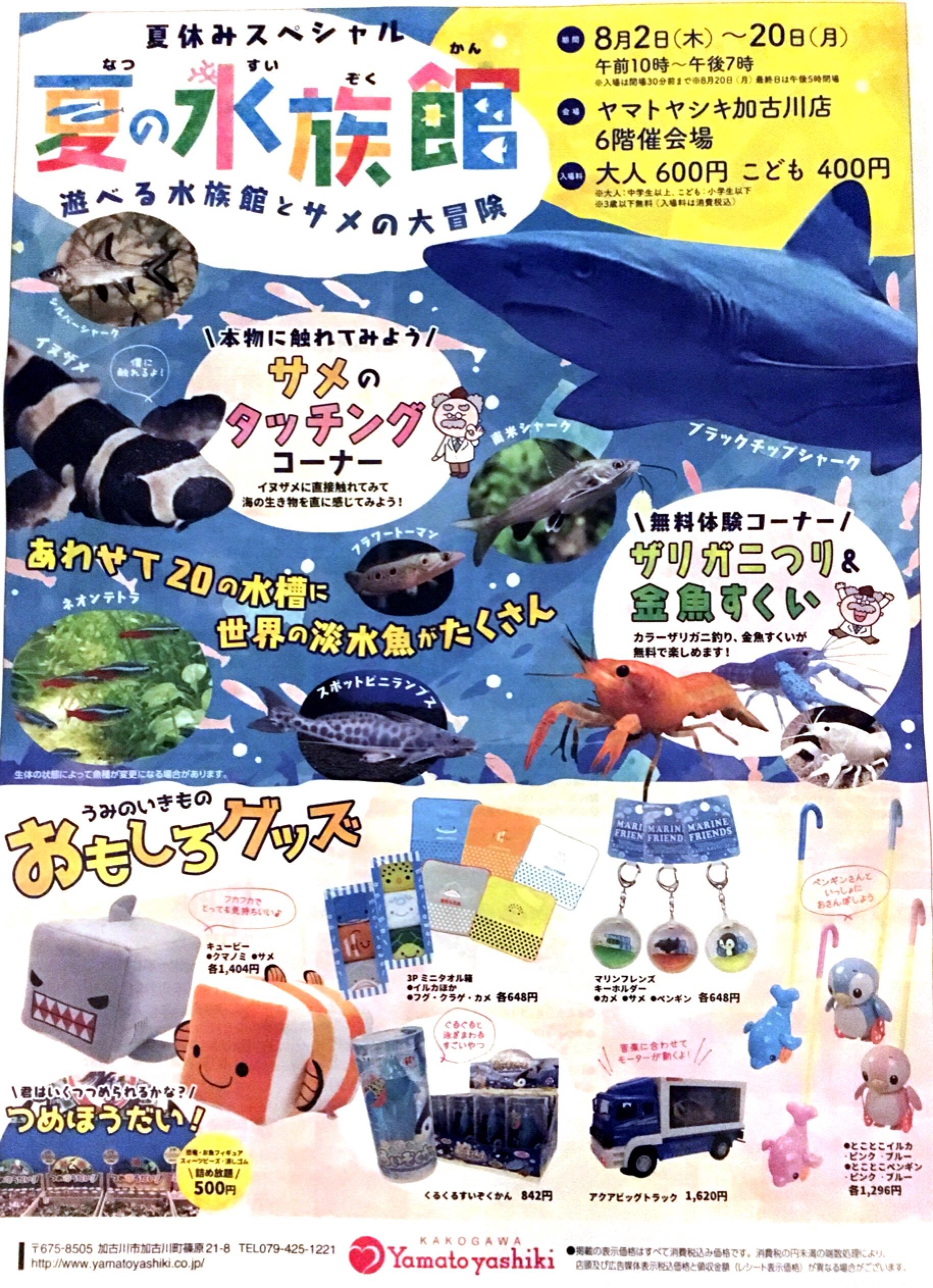 ヤマトヤシキで夏の水族館2018開催中☆世界の淡水魚が集合🐟